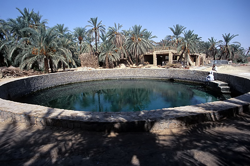 things to do in Siwa Oasis, Cleopatra's Pool